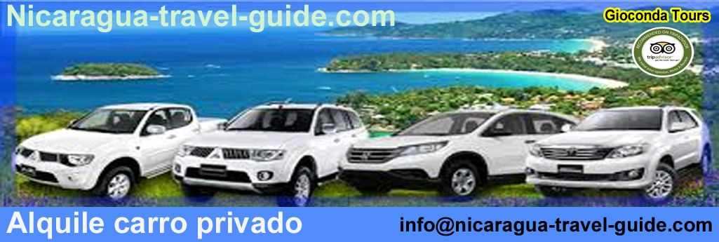 header carro privado de alquiler