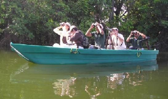 bote de remo y electrico tour entre las isletas obeservacion de aves