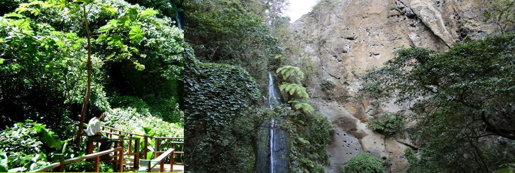 managua tour chocoyero el brujo reserva cascada de agua