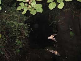 volcanmasayacuevadelosmurcielagos